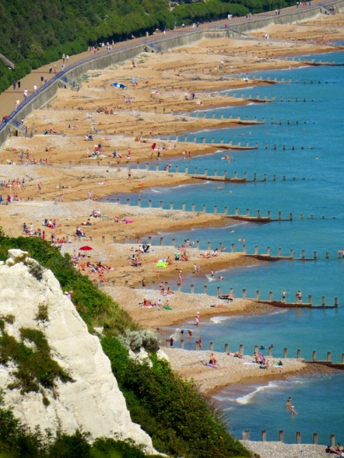 Beaches from Beachy Head by Andrew Case