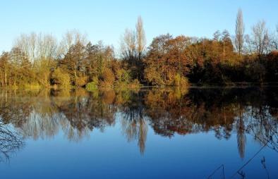 Reflections: Aquadrome
